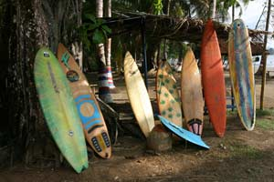 Rental surfboards in Dominicalito.
