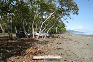 Playa Matapalo is a sandy beach that has trees one can lie under for shade.